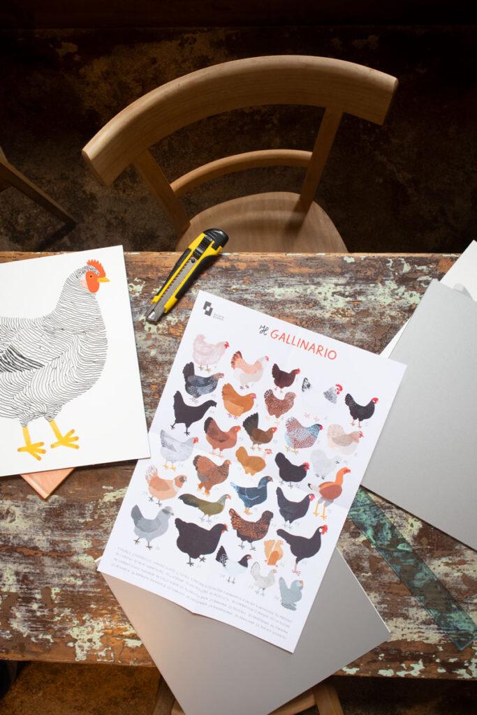 sullaluna libreria Venezia Illustrazioni di Camilla Pintonato